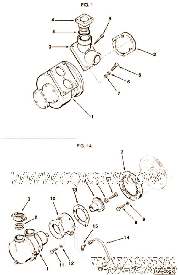 145592O型密封圈,用于康明斯KT38-G-500KW柴油发动机海水泵驱动组,【发电用】配件