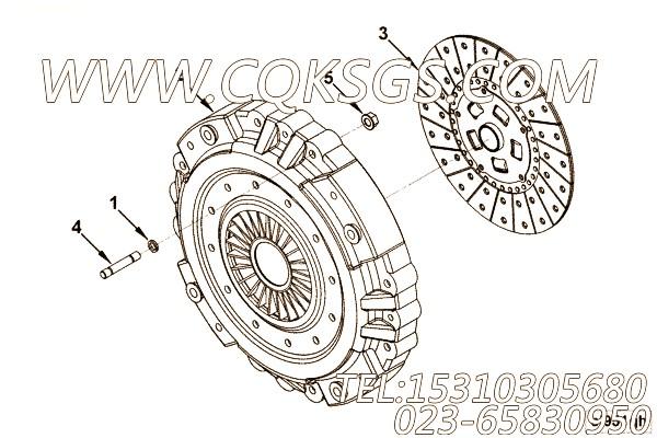【发动机ISC8.3-230E40A的离合器组】 康明斯I型六角螺母,参数及图片