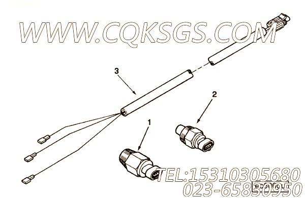 Harness, Wiring