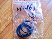 212161O型圈,用于康明斯NT855-M300主机出水管组,更多【船用主机】配件报价