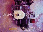 3000446油门盖板,用于康明斯NTC-350柴油机燃油泵组,更多【钻机】配件报价