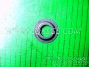 【气门弹簧】康明斯CUMMINS柴油机的3001663 气门弹簧