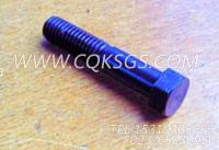 102020六角螺栓,用于康明斯KTA38-G5发动机齿轮室安装组,更多【发电机组】配件报价