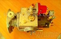 3042115燃油泵,用于康明斯NT855-C250主机燃油泵总成组,更多【重庆重汽牵引车】配件报价