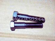 106069六角螺栓,用于康明斯KTA38-C1050动力机油盘组,更多【渣罐车】配件报价