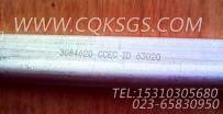 3084620油管,用于康明斯KTA19-G4柴油机基础件组,更多【柴油发电】配件报价