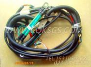 3165395导线,用于康明斯KT38-G-500KW主机发动机导线组,更多【电力】配件报价