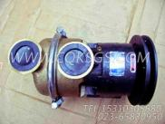 3655857海水泵,用于康明斯NTA855-G1柴油机海水泵及安装组,更多【发电用】配件报价