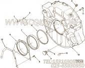 【飞轮壳】康明斯CUMMINS柴油机的3921296 飞轮壳