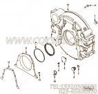 【引擎6CTA8.3-10的飞轮壳组】 康明斯飞轮壳报价,参数及图片