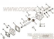 【齿轮油泵】康明斯CUMMINS柴油机的3033738 齿轮油泵