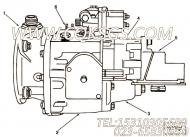 【燃油泵总成】康明斯CUMMINS柴油机的3061117 燃油泵总成