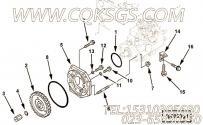 【燃油泵齿轮】康明斯CUMMINS柴油机的C6205713140 燃油泵齿轮