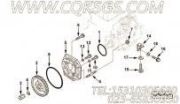 【燃油泵齿轮】康明斯CUMMINS柴油机的C6204713220 燃油泵齿轮