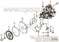 【燃油泵齿轮】康明斯CUMMINS柴油机的4993826 燃油泵齿轮
