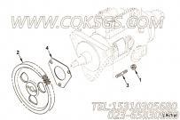 【燃油泵齿轮】康明斯CUMMINS柴油机的3929032 燃油泵齿轮