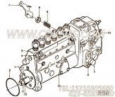 【齿轮紧固螺母】康明斯CUMMINS柴油机的3912894 齿轮紧固螺母