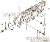 【3912643】燃油喷射泵 用在康明斯发动机
