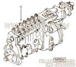【引擎6CT8.3-C205的基本燃油泵组】 康明斯燃油喷射泵报价,参数及图片