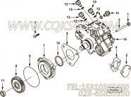 【燃油泵齿轮】康明斯CUMMINS柴油机的4893277 燃油泵齿轮