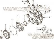 【燃油泵齿轮】康明斯CUMMINS柴油机的4893389 燃油泵齿轮