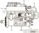 【燃油泵体】康明斯CUMMINS柴油机的4902769 燃油泵体