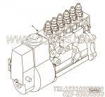【柴油机L290 30的基本燃油泵组】 康明斯燃油喷射泵报价,参数及图片
