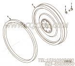 【引擎6CTA8.3-M220的飞轮组】 康明斯飞轮总成报价,参数及图片