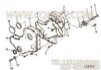 【齿轮罩】康明斯CUMMINS柴油机的3905203 齿轮罩