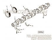【主轴承】康明斯CUMMINS柴油机的3082350 主轴承
