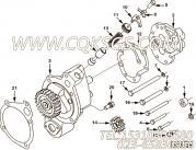 【机油泵】康明斯CUMMINS柴油机的AR12340 机油泵
