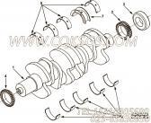 【曲轴齿轮】康明斯CUMMINS柴油机的4892438 曲轴齿轮