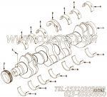 【柴油机L340 30的缸体组】 康明斯曲轴总成报价,参数及图片
