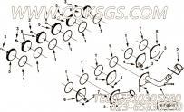 【手孔盖】康明斯CUMMINS柴油机的4016093 手孔盖