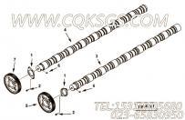 【凸轮轴齿轮】康明斯CUMMINS柴油机的3089081 凸轮轴齿轮