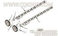 【凸轮轴】康明斯CUMMINS柴油机的3640875 凸轮轴
