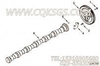 【4896421】凸轮轴 用在康明斯引擎