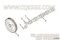 【凸轮轴】康明斯CUMMINS柴油机的3912842 凸轮轴