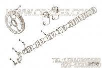 【凸轮轴】康明斯CUMMINS柴油机的3971900 凸轮轴
