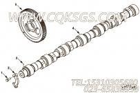 【引擎ISC8.3-292E40A的性能件组】 康明斯凸轮轴报价,参数及图片