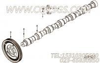 【凸轮轴】康明斯CUMMINS柴油机的3977672 凸轮轴