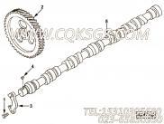 【发动机6CTA240的性能件组】 康明斯凸轮轴总成报价,参数及图片