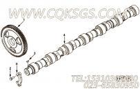 【柴油机C245 21的性能件组】 康明斯凸轮轴组合件报价,参数及图片