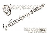 【凸轮轴齿轮】康明斯CUMMINS柴油机的3967613 凸轮轴齿轮