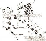 43764#管接头,用于康明斯NTA855-C360柴油机发动机散件组,更多【混应土拖泵】配件报价
