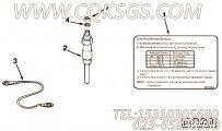 【识别标记】康明斯CUMMINS柴油机的C0098596400 识别标记