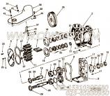 【Screw】康明斯CUMMINS柴油机的21601 A Screw