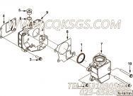 【节温器盖】康明斯CUMMINS柴油机的3683616 节温器盖