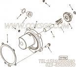 【3678846】O形密封圈 用在康明斯引擎