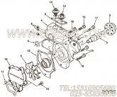 【节温器】康明斯CUMMINS柴油机的C0309053500 节温器